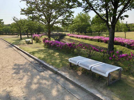 わんぱく広場のベンチ