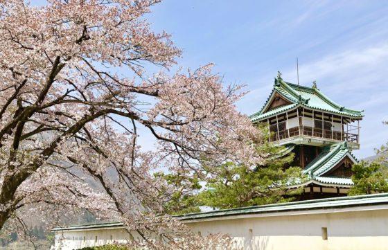 神岡城と桜