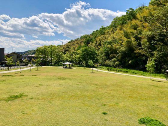 呉羽丘陵多目的広場の奥の芝生