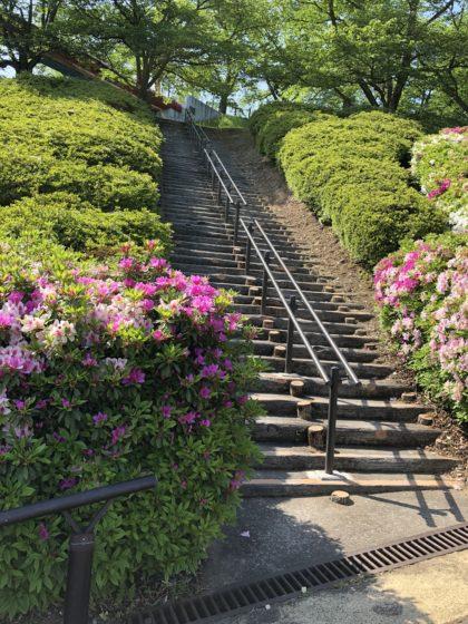 園内の階段