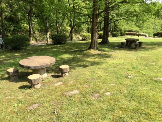 木陰のベンチとイス
