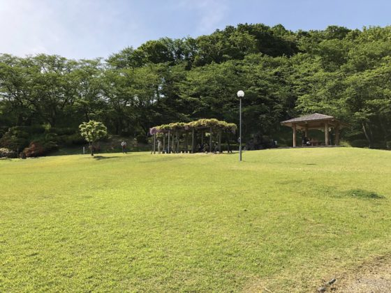 公園屋上の休憩所と藤棚