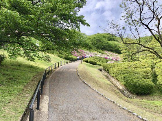 水道つつじ公園内の坂道
