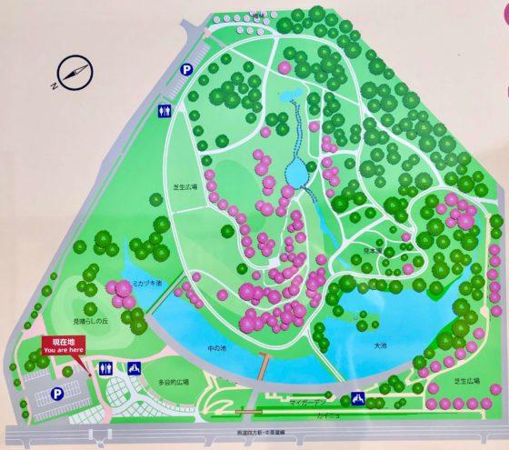 呉羽山公園 都市緑化植物園の見取り図