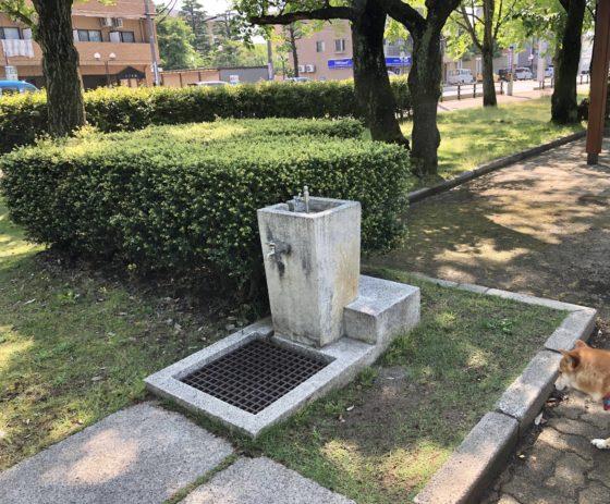 正面広場の水道