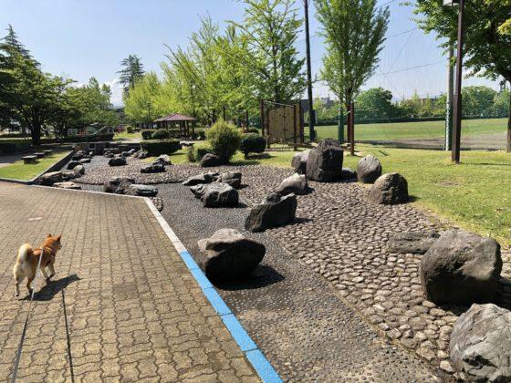 五福公園の池