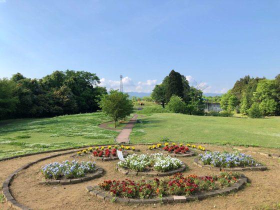 花の丘の花壇