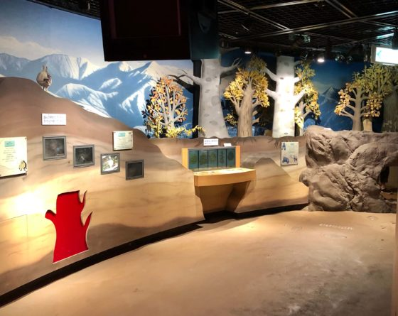 地下回廊の展示