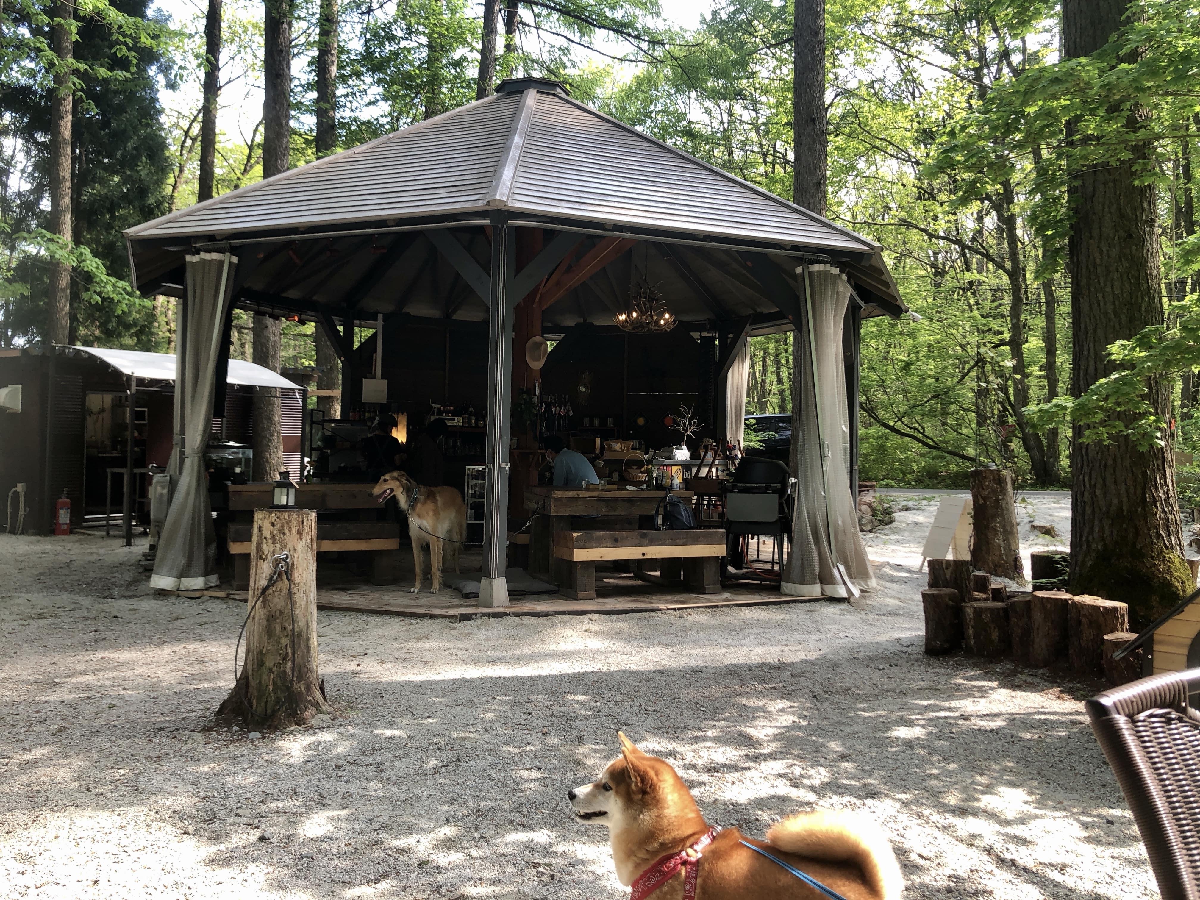 森のカフェシーシャ外観